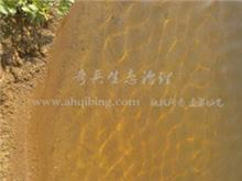 Changzhou Tianmu poultry wastewater ecological restoration and treatment project